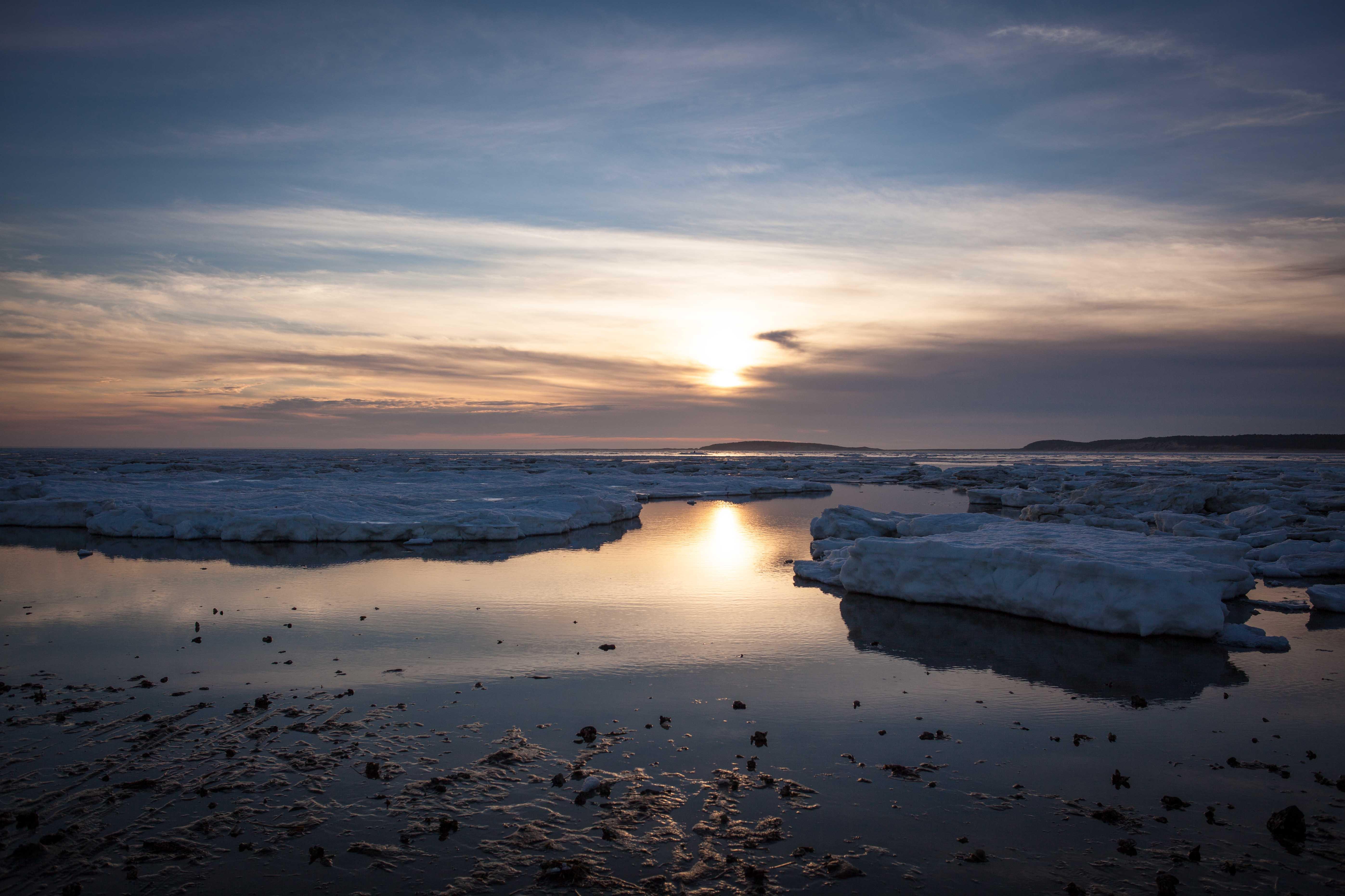 Wellfleet in Winter (2013)