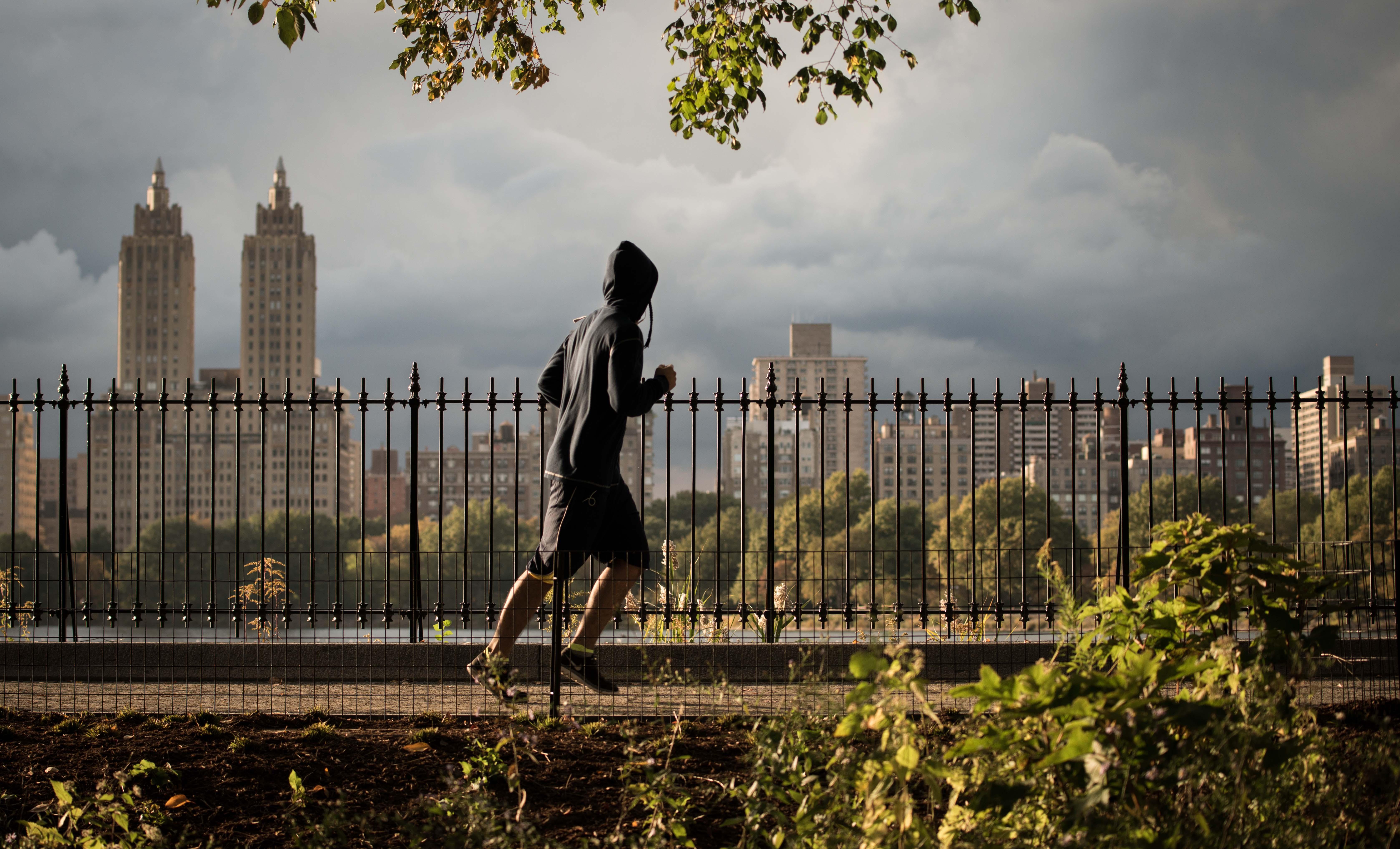 Central Park Jogger (2014)